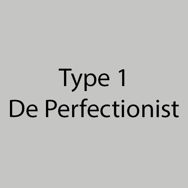 Type 1 - De Perfectionist - Grijs-Zilver